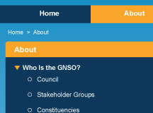 gnso.icann.org